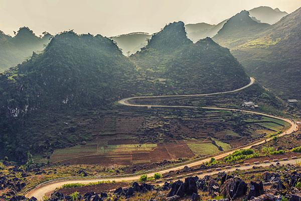 Lipedema's Long and Winding Road